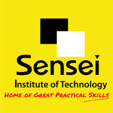 Students are trained in both theory and practice. Home Sensei Institute Of Technology Home Of Great Practical Skills