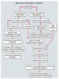 Problem Solving Emt Patient Assessment Flow Chart 2019