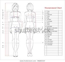 Body Fitness Chart Woman Body Measurement Chart Scheme Measurement Stock Vector