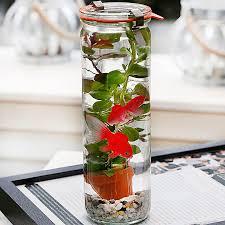 glass jar with aquatic 2 artificial goldfish plant