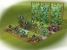Small Picture Small Vegetable Garden Ideas Pinteres