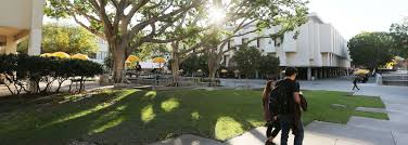 Meet the Alumni Association Team | Cal State LA
