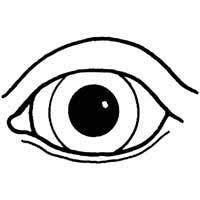 Small Picture Coloring Sheet EyesSheetPrintable Coloring Pages Free Download