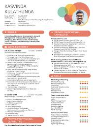 Resume Examples By Real People: Sierra Construction Key Account ...