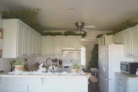 epic greenery above kitchen cabinets 56 for your designing home inspiration with greenery above kitchen cabinets