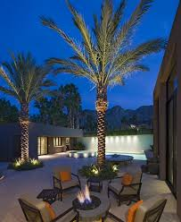 tropical outdoor lighting. tree lighting tropical outdoor