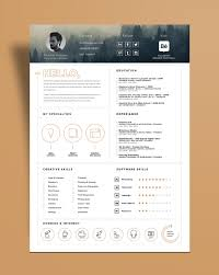 Free Stylish Resume Template And Resume Icons Ai File