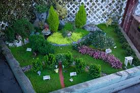 Small Picture A little garden magic Gardeners embrace miniature plants as
