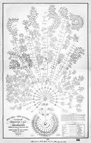 Organizational Chart Wikimedia Commons