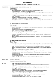 Download Salesforce Technical Lead Resume Sample as Image file