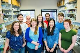 Summer Undergraduate Research Experience Sure Science College Of