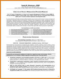 12 Project Manager Resume Summary The Stuffedolive Restaurant