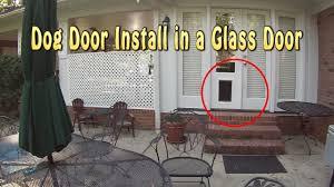 exterior doors with pet door installed. installing a dog door into glass french doors exterior with pet installed