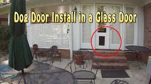 installing a dog door into glass french doors