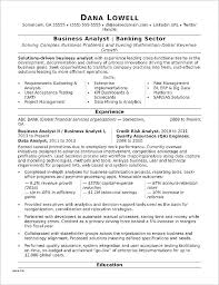Resume Templates Microsoft Word 2013 Cool Professional Resume Template Cteamco