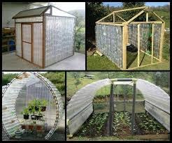 diy greenhouse petgreenhouse