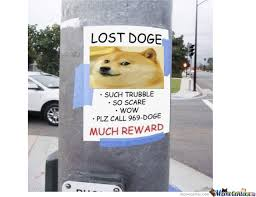 lost doge. Beautiful Doge Download And Lost Doge
