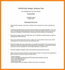 18 30 60 90 Day Plan Template Word World Wide Herald
