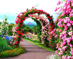 Small Picture 15 Beautiful Gardens for you Millionplaces4you Vibrant Garden