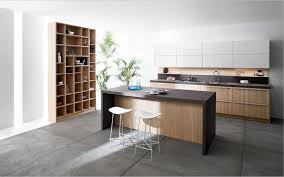 Italian Kitchen Furniture Kitchen Modern Italian Kitchen Cabients Valcucine Genius Loci