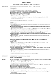 Sample Management Consultant Resume Business Management Consultant Resume Samples Velvet Jobs 11