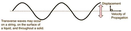 transverse and longitudinal waves venn diagram transverse and longitudinal waves
