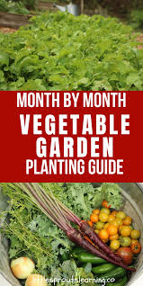 Month By Month Vegetable Garden Planting Guide Little