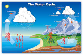 ged science practice test  water cycle   open window learningsci