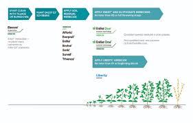 Soybean Herbicide Chart Kozen Jasonkellyphoto Co
