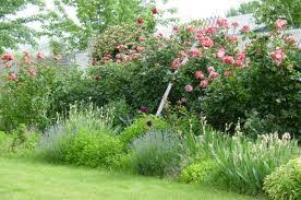 Small Picture Cottage Garden Design Ideas Cottage Landscape Design Plans English