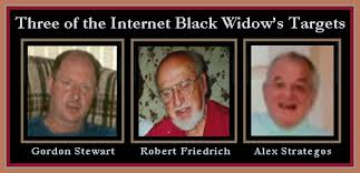 Image result for Internet black widow
