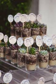 De lembrancinha: suculentas. Wedding PlantsPlant Wedding FavorsTerrarium ...