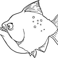 Small Picture Print Of Flounders Coloring Pages Photos Tuna Fish Betta 3 Cute