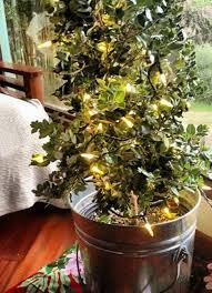 Pretty Christmas Trees U2013 Kawaii Christmas  Hawaii Kawaii BlogChristmas Tree Hawaii