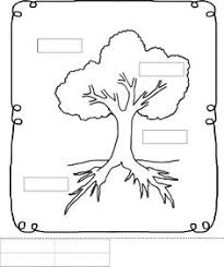 3fb76366bd8e052904b0463efc2f110d preschool worksheets science education computer worksheet for grade 1 places to visit pinterest on grade 1 science worksheets