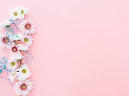 Flowers Of Pink Backgrounds Flowers Pink Templates Free Ppt