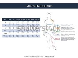 Free Size Chart Template Size Chart Men Measurements Clothing Male Stock Vector