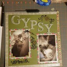 personalized cat lover gift gifts kitten album memo gifts for pet lovers28
