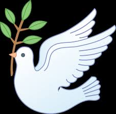 4839x4754 peace dove with olive branch