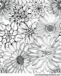 coloring coloring pages flowers printable together with flower for s free simple
