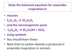 state the balanced equation for anaerobic respiration in