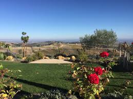 DAOU Vineyards and Winery: An American Dream