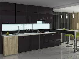 Contemporary Kitchen Cabinet Doors Black Kitchen Cabinets Dayton Door Style  Cliqstudios