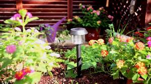 Solar Light Packs Xltd 300 1 6 Packs Garden Solar Outdoor Light Series Wholesale For Home Pathway Use Plastic Path Outdoor Garden Solar Light Buy Solar Light Outdoor