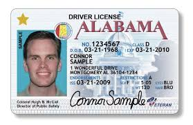 Anthgianette Certificate Ssn Driver License Make By Card Birth