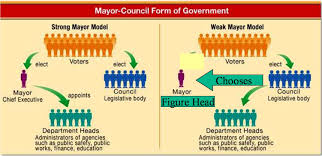 Parliamentary System Vs Presidential System Chart Municipal Government