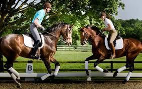 Great Shot!!! Patrik Kittel & Lyndal Oatley   Horses, Equestrian, Zoology