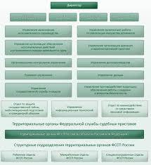 Отчет по практике в службе судебных приставов Отчет по практике Юриспруденция право государство
