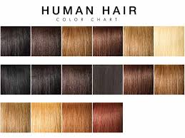 Human Hair Color 101 All You Need To Know About
