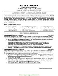 Complex Account Executive Resume Objective Account Executive Resume